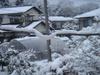 2008_1_18_yuki3